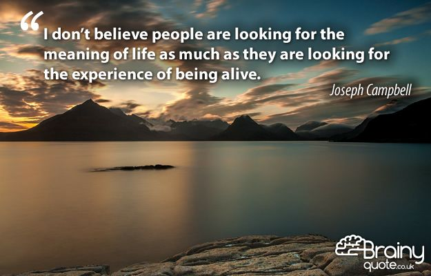 """""""I don't believe people are looking for the meaning of #life   as much as they are looking for the experience of being  alive."""""""