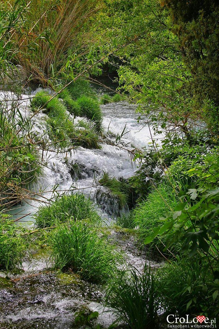 Wartki nurt rzeki Krka | CroLove.pl |