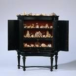 Petronella Oortman - display cabinet with shells