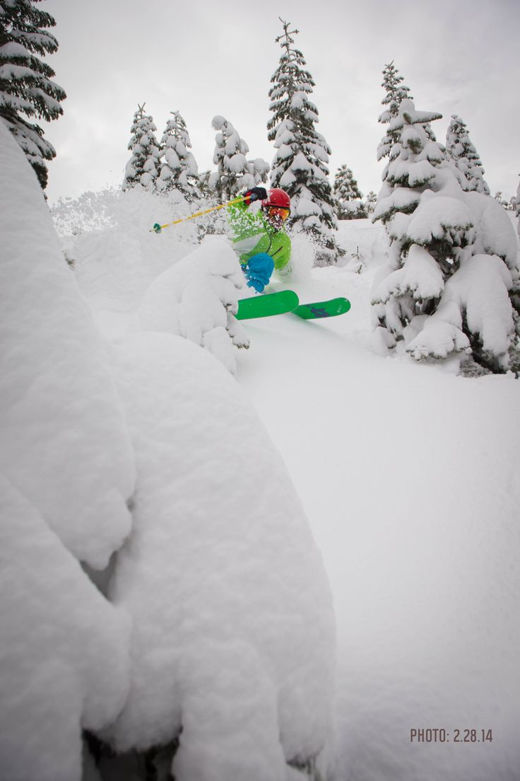 Closing out February with a BANG. 8+ FEET of snow in the shortest month of the year.