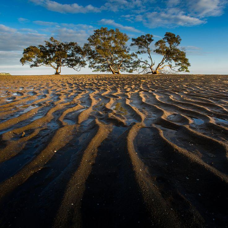 Wetlands by Mark  Lawson / 500px