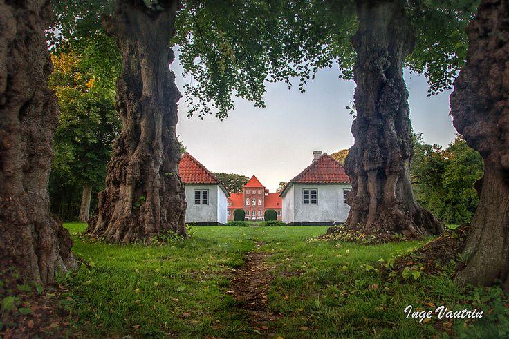 Hald Hovedgaard, Dollerup Bakker, near Viborg, Denmark. by Inge Vautrin