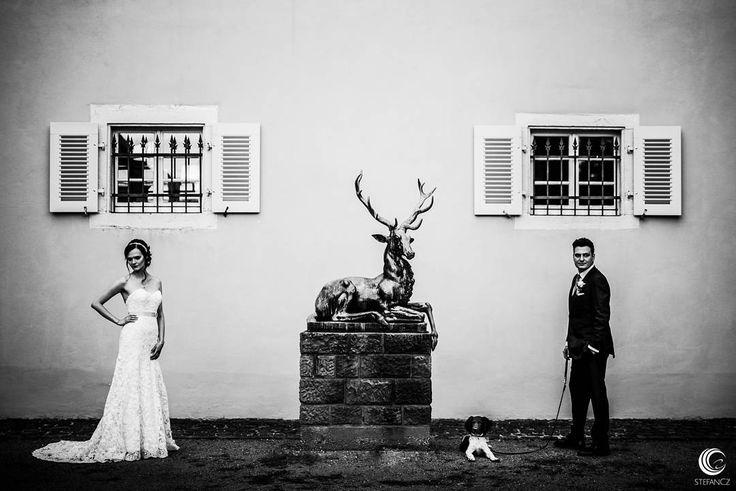 #jagdschloss #kranichstein #hochzeit #wedding #weddingphotographer #hochzeitsfotograf #frankfurt #stefancz #photographer #photography #fotograf #weddinginspiration #hochzeitsfotografie #heiraten #instawedding #instablogger #photooftheday #weddingphotography #photo #weddings #weddingphoto #groom #bride #love  www.stefancz.de