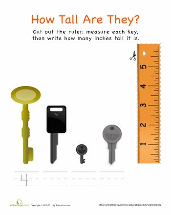 Worksheets: How Tall Are They: Keys