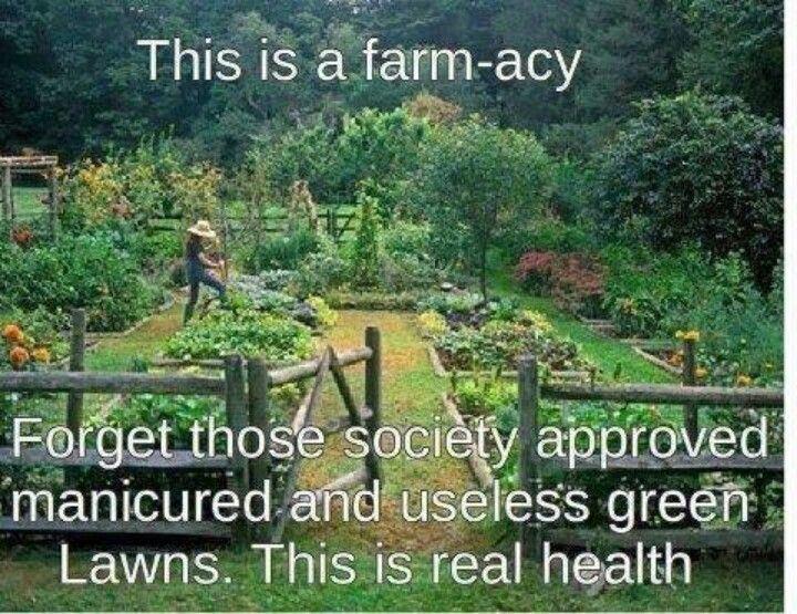 69 best vegetable garden design