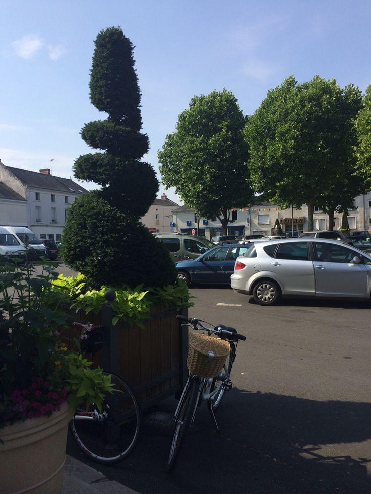 Parked bikes.