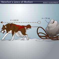 """HowStuffWorks """"Newton's Second Law (Law of Motion)"""" week 16, week 17, week 18"""