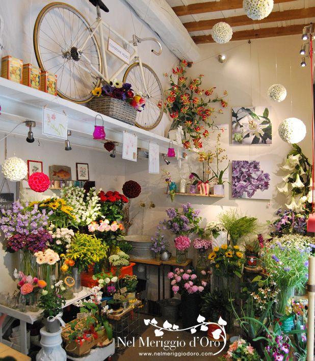 Nel Meriggio d' Oro - negozio di fiori, piante, idee - via Firenzuola, Firenze