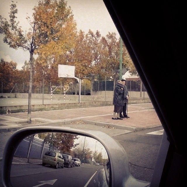 Paisaje urbano #autum #otoño #urban #city #valladolid #siempredepaso #spain