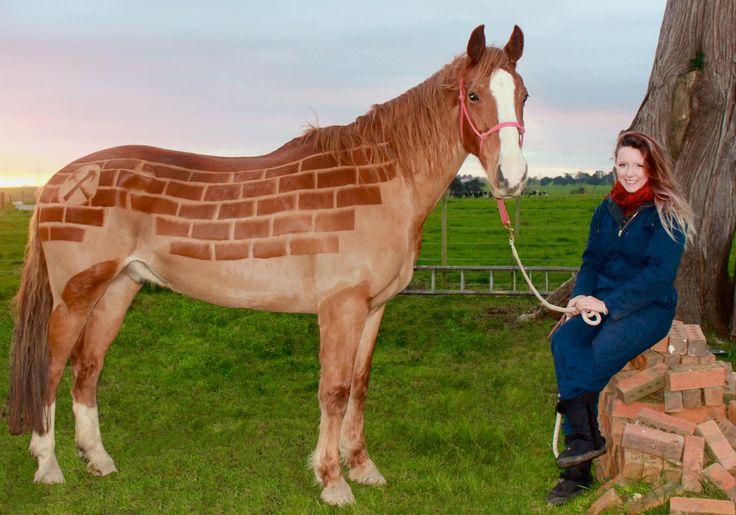 Картинки по запросу бывают лошади