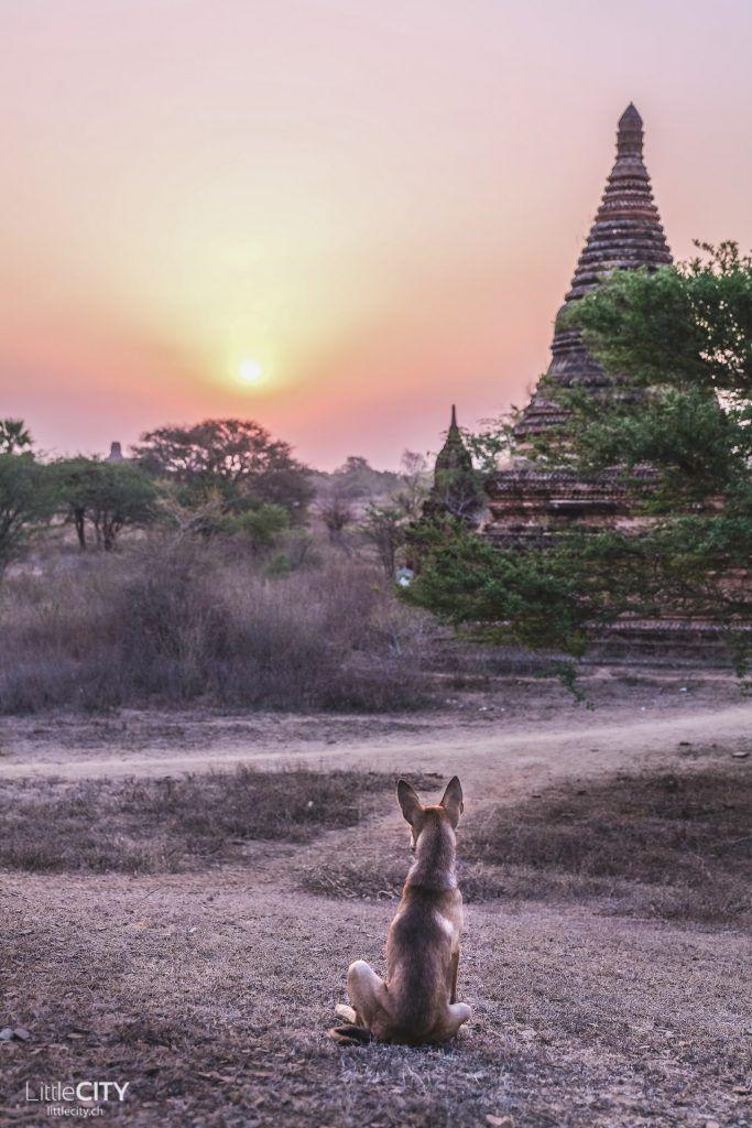 Myanmar Reisetipps: Route, beste Reisezeit und TOP Sehenswürdigkeiten   – Urlaub