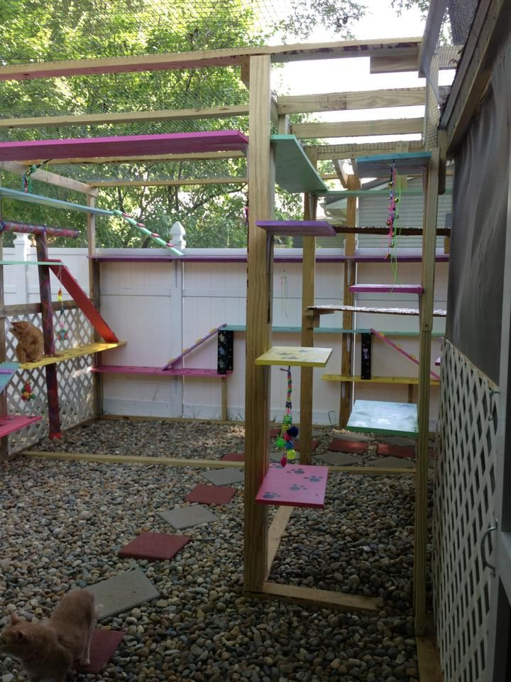 17 best images about catio designs on pinterest cat