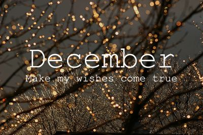 December on we heart it / visual bookmark #44823880