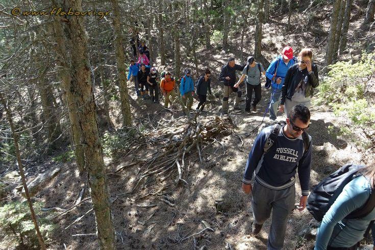Σάββατο 14 Οκτωβρίου 2017  Πεζοπορική βόλτα για φυσιολάτρες
