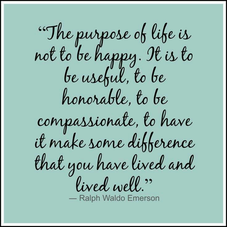 My Purpose In Life Quotes Prepossessing 187 Best My Life Mission Images On Pinterest  Live Life Quote