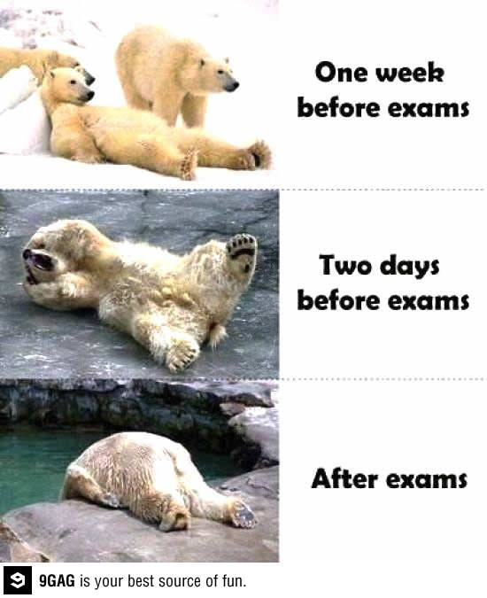 Finals... So Appropriate for right now! Lol