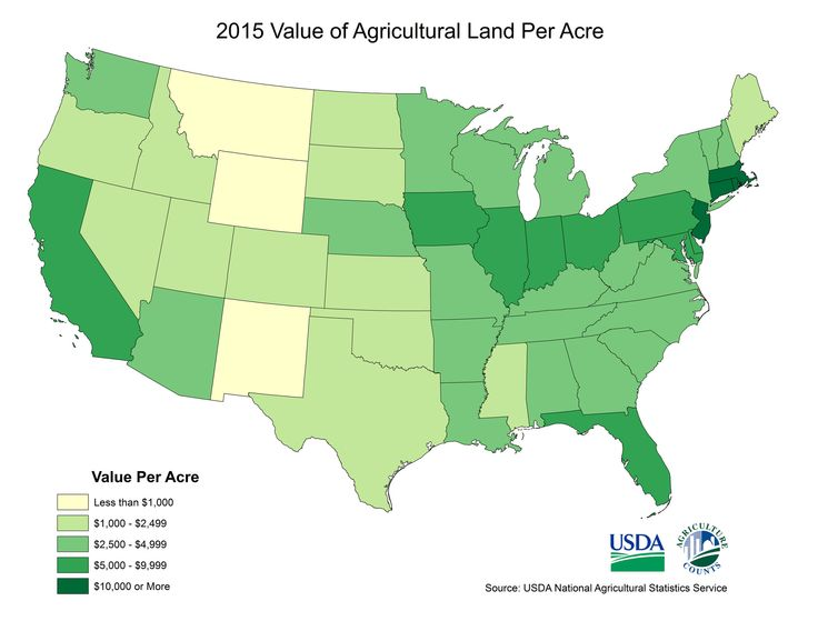 Best Friday Fun Ag Facts Images On Pinterest Friday Fun - Agriculture by state us map