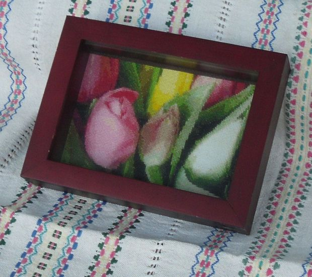 Tulips 1, year 2007