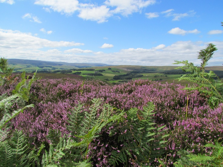 Cycling in the North Pennines Area of Outstanding Natural Beauty - Durham