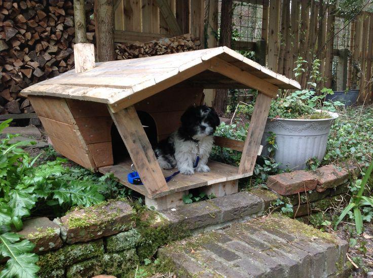 Hondenhok met veranda (verkocht)
