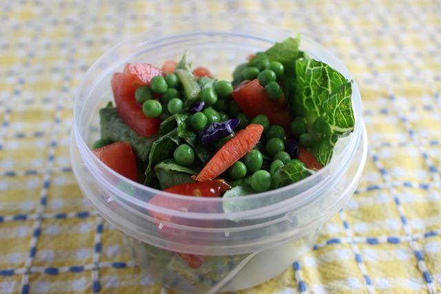 Brown Bag Lunch Menus That Will be Eaten at School!
