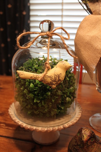 Boxwood Topiary Ball Cloche with spring birdie....