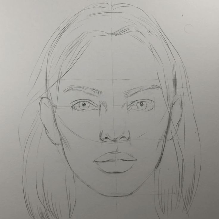 How to attract a face. Face proportions