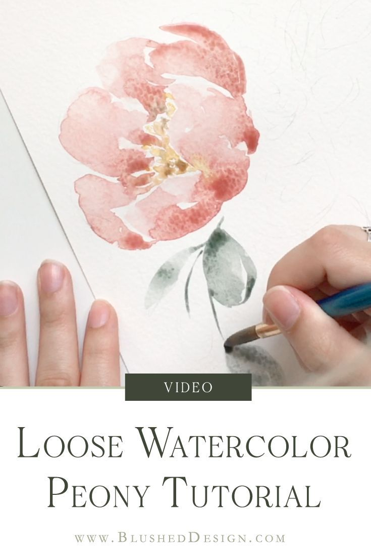Loose Watercolor Peony Watercolor Tutorial For Beginners
