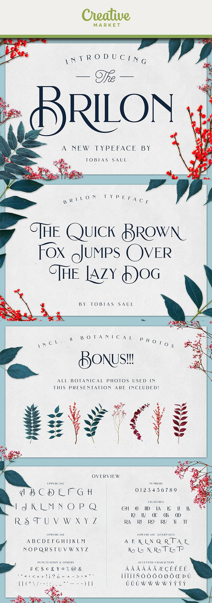 #affiliate Brilon is an elegant serif font inspired by the Art Deco era. It perfectly represents vintage esthetics in a modern and minimalist way. The font includes special uppercase letters, alternate characters and beautiful ligatures. Furthermore it comes with 8 botanical photos which I used in this product presentation! The font is perfect for elegant logo design, packaging or invitation cards.