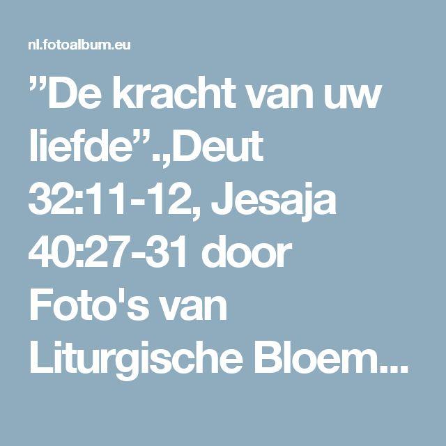 """""""De kracht van uw liefde"""".,Deut 32:11-12, Jesaja 40:27-31 door Foto's van Liturgische Bloemstukken Leger des Heils Maassluis on Fotoalbum"""