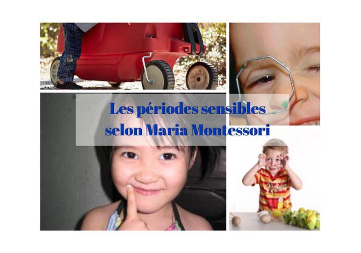 Comment définir les périodes sensibles selon Maria Montessori ? Quelles sont les 6 périodes sensibles ? A quoi ça sert de les connaître ?