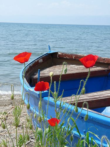 blue boat with orange poppies
