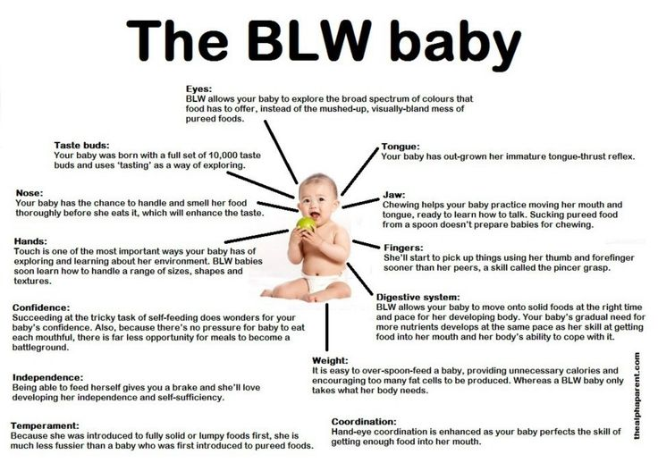 Baby Led Weaning Baby