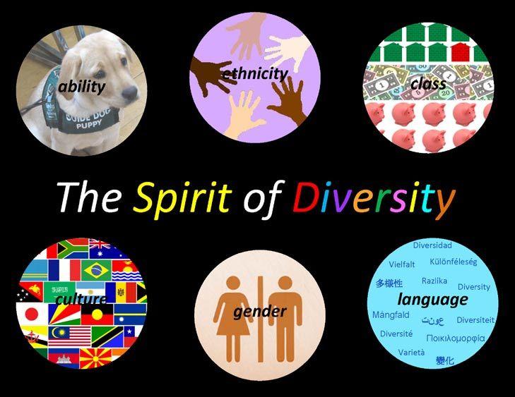 Diversity appreciation essay
