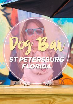 There's plenty of dog friendly bars in the Tampa Bay area, but nothing like The Dog Bar in St. Petersburg! This place is designed so that the dogs can have fun playing off leash in the park area while the owners sit at the bar and watch their fur babies have fun.