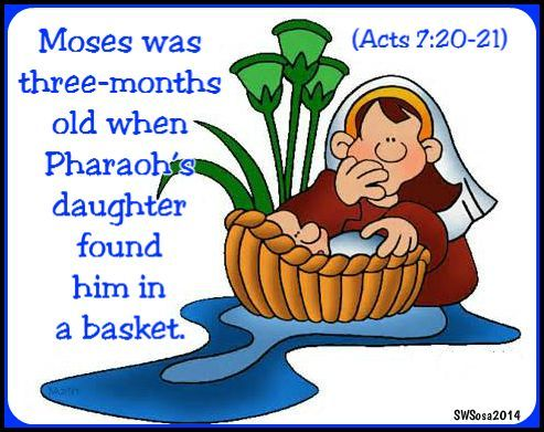 154 best images about moses crafts on pinterest crafts for Crafts for 14 month old