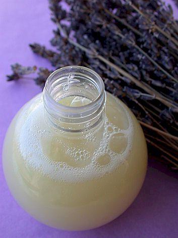 """Shampooing anti-poux : 150 ml de base lavante neutre bio, 50 gouttes d'huiles essentielles de lavande fine bio. Mélanger délicatement.  Ce shampoing anti-poux s'utilise comme un shampoing traditionnel en le laissant poser 10 minutes avant de rincer.    Ce shampooing est idéal en complément du baume anti-poux en curatif et en complément du spray """"halte aux poux"""" pour du préventif."""