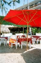 What is the One Food You Would Pick Thats Best in PV? - Puerto Vallarta Forum - TripAdvisor