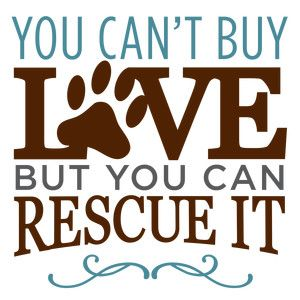 Silhouette Design Store: you can't buy love rescue dog phrase