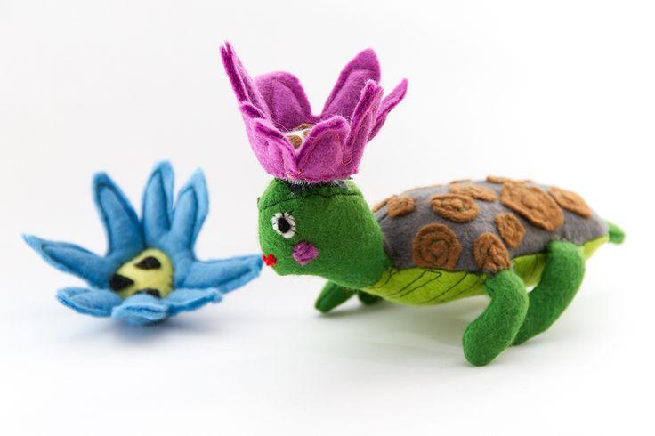 Fashionable turtle