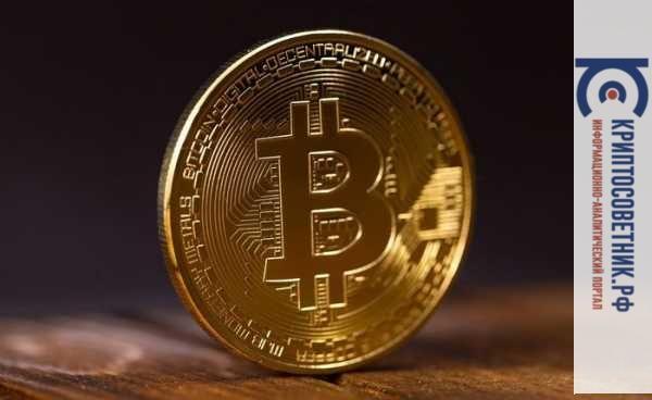 Mashkova mining bitcoins super bowl betting square