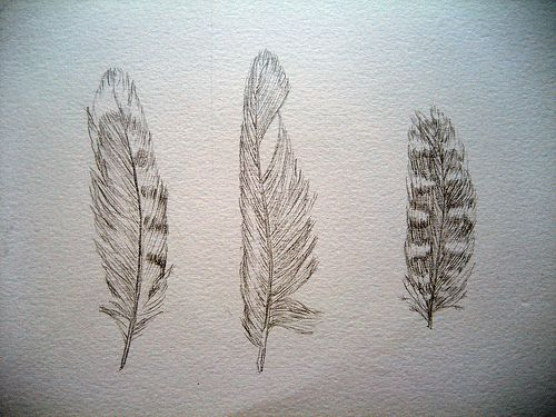 ever searching for the perfect feather tattoo design.