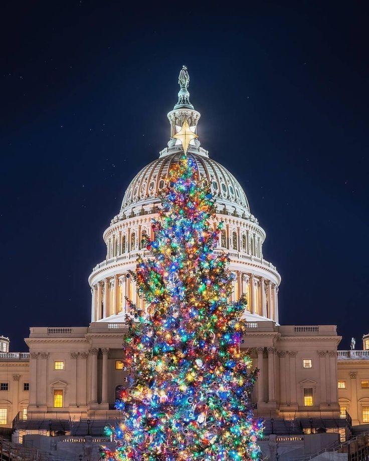 Christmas Day In Dc 2021 Pin By Sadik Perez On Washington Dc In 2021 Washington Dc Empire State Building Holiday Decor