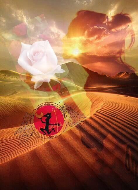 Tu... Sei la luce che illumina il mio mondo sei la rosa che fiorisce nel mio deserto sei l'acqua che disseta il mio essere... Grazie di esistere grazie perche' mi doni la tua parola la tua visione i tuoi baci.... ((AGUS))