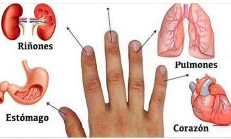 Cada Dedo Está Conectado con 2 Órganos: Método Japonés de Curación! Este es un método japonés que consiste en el tratamiento de ciertas condiciones de salud dentro de los 5 minutos con el uso de los dedos. Cada dedo está conectado con dos órganos. Es una parte de la antigua medicina alternativa japonesa que se ...