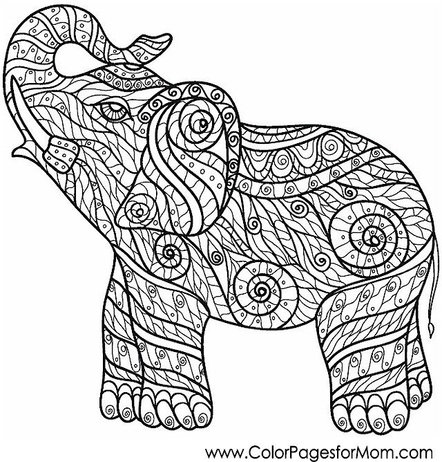 50 best Elephants Coloring For Adults Art Pages images on Pinterest - best of complex elephant coloring pages