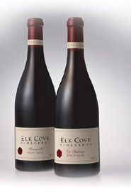 Elk Cove Pinot Gris 2010, cheap and good