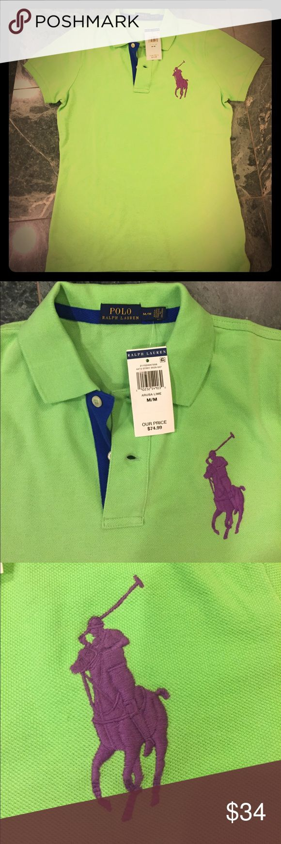 Ralph Lauren Lime Polo shirt size M Brand new Polo shirt, lime color with the purple polo logo. It is a fitted shirt so it almost seems like it runs a bit small. Lauren Ralph Lauren Tops
