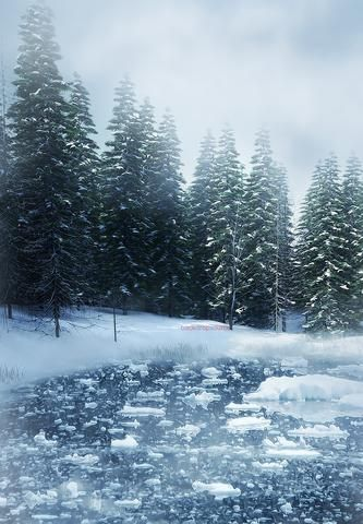 #photography backdrops for snow background natural shoot