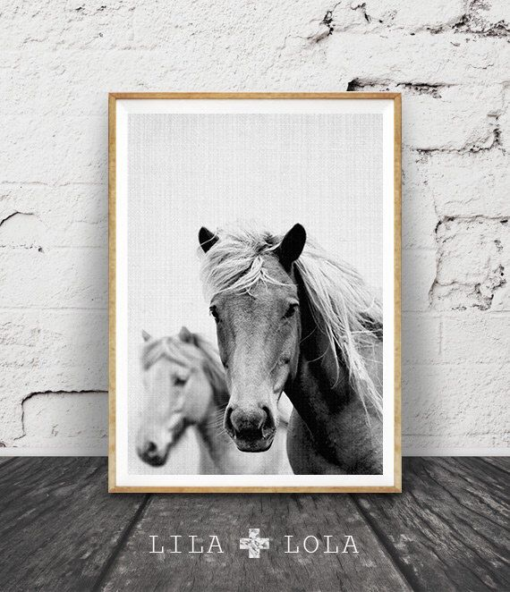 Horse Photo, Horse Print, Black And White Photography, Wall Art, Icelandic  Horse